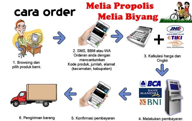 cara order melia propolis biyang asli