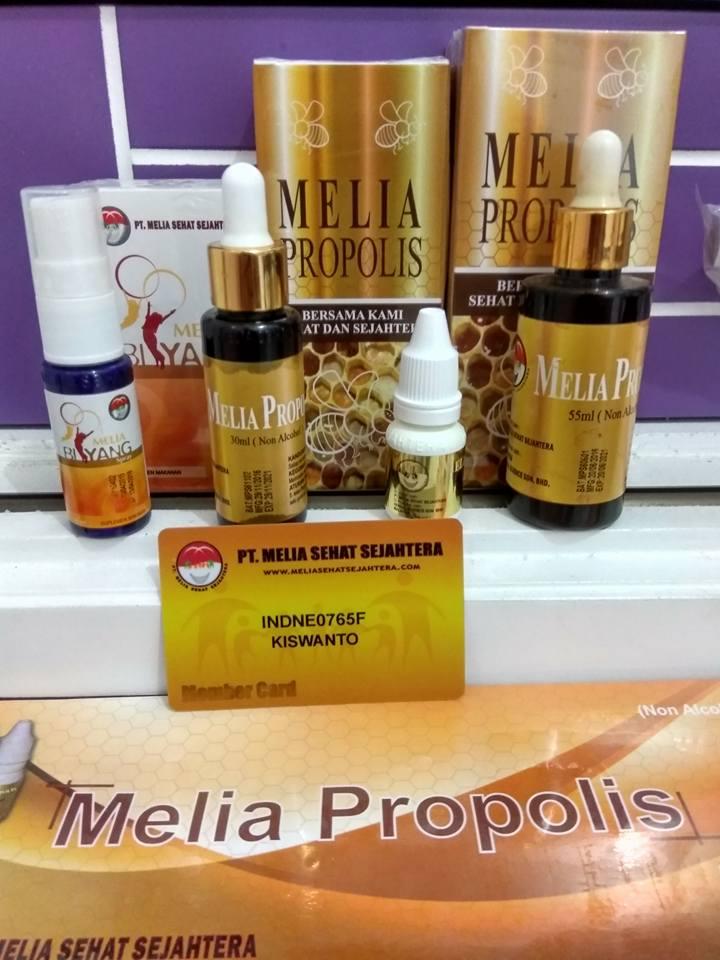 propolis online
